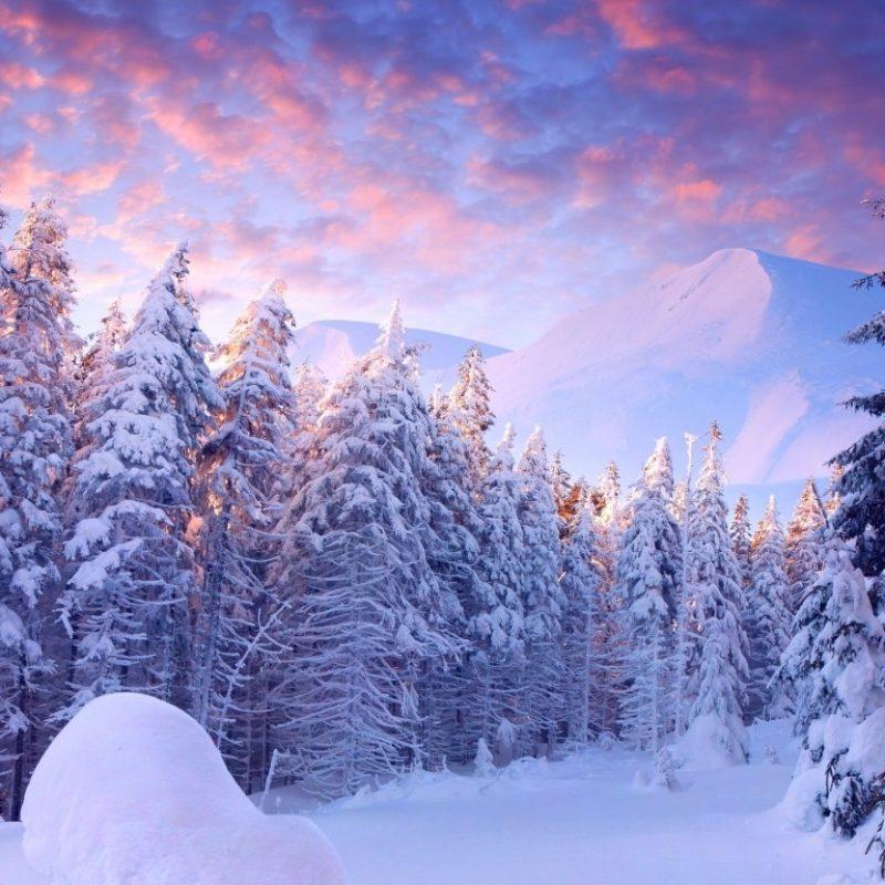 10 Most Popular Winter Wonderland Wallpaper Desktop FULL HD 1080p For PC Background 2020 free download winter wonderland bureau galerie fonds decran 68 plus juegosrev 800x800