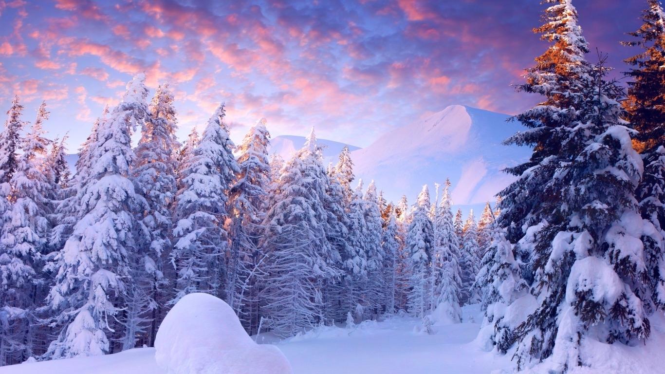 winter wonderland bureau galerie fonds d'écran (68 plus) - juegosrev