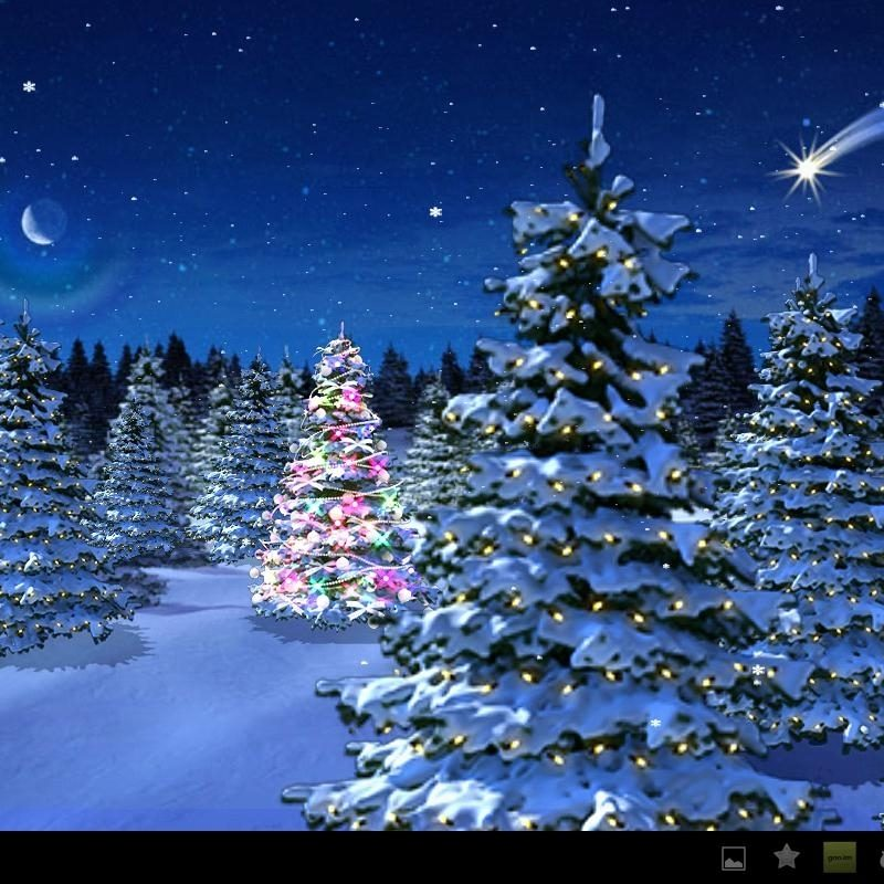 10 New Winter Wonderland Screensavers Free FULL HD 1080p For PC Desktop 2018 free download winter wonderland christmas screensaver festival collections 800x800
