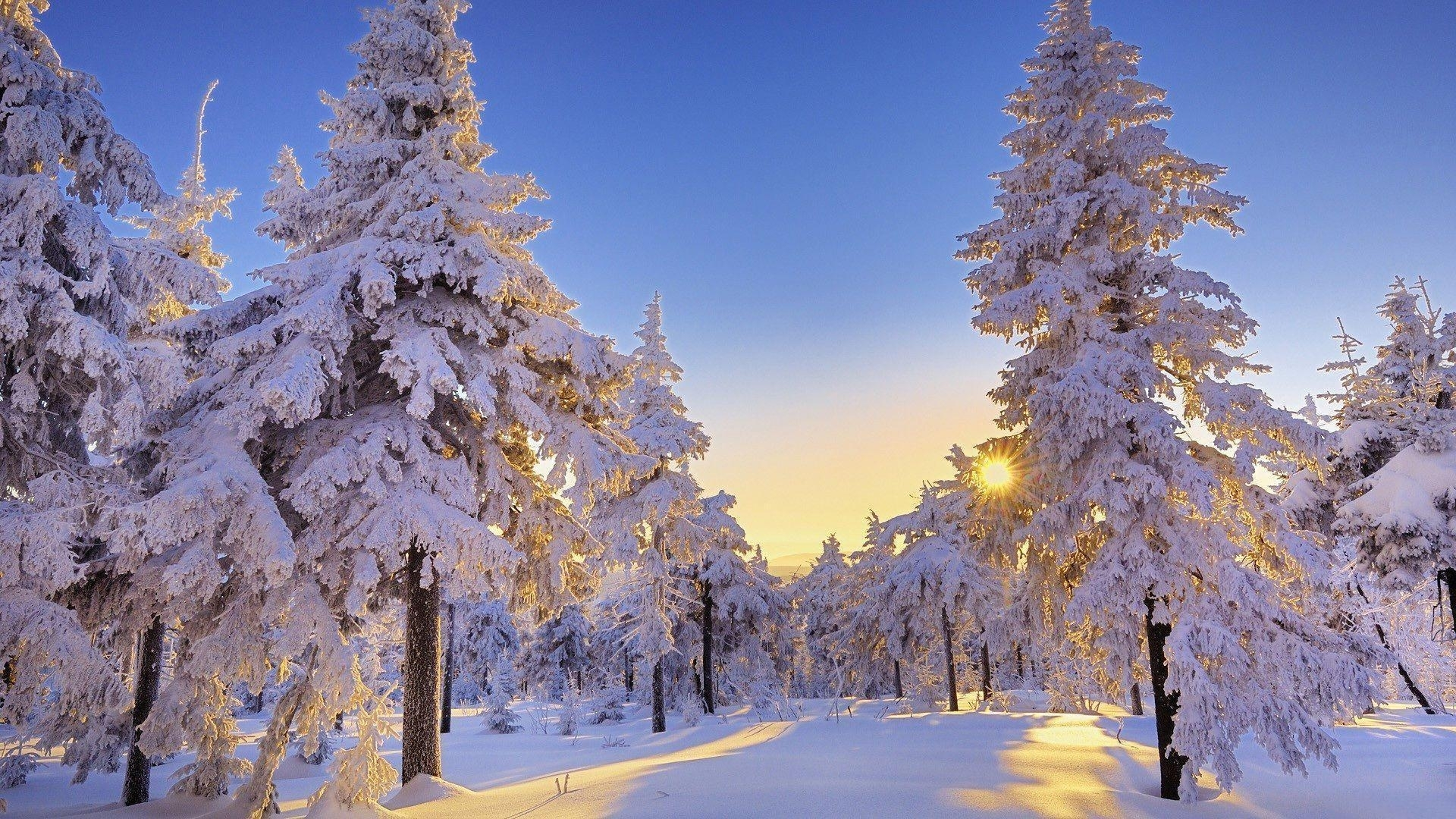 winter wonderland desktop backgrounds - wallpaper cave