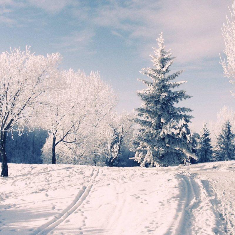 10 Latest Winter Wonderland Backgrounds For Desktop FULL HD 1080p For PC Desktop 2020 free download winter wonderland desktop backgrounds wallpaper cave 5 800x800