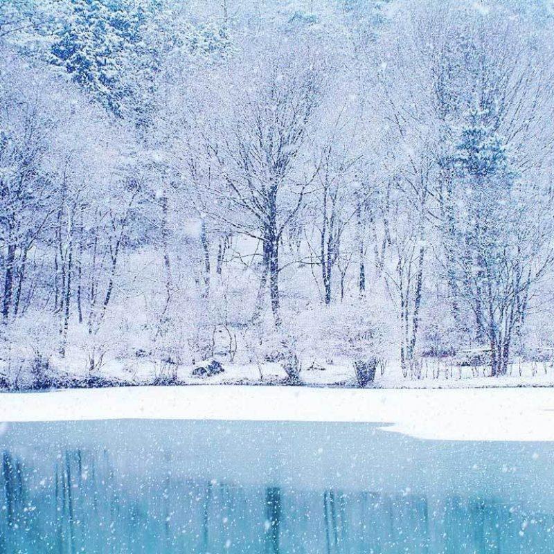 10 Latest Winter Wonderland Backgrounds For Desktop FULL HD 1080p For PC Desktop 2020 free download winter wonderland desktop backgrounds wallpaper cave 6 800x800