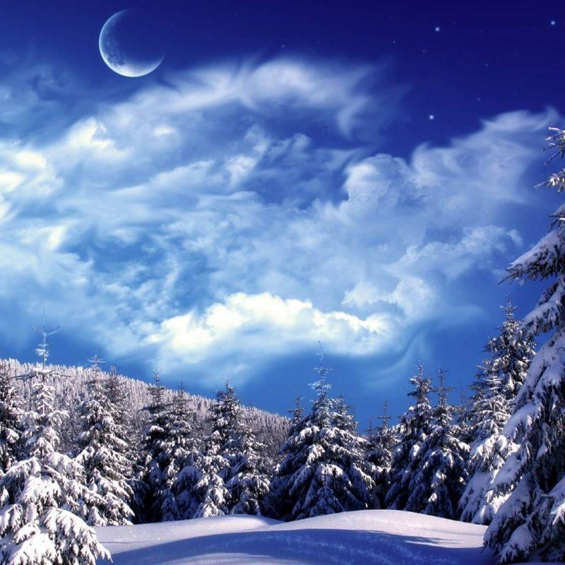 10 Latest Winter Wonderland Backgrounds For Desktop FULL HD 1080p For PC Desktop 2020 free download winter wonderland desktop backgrounds wallpaper wonderland 2 800x800