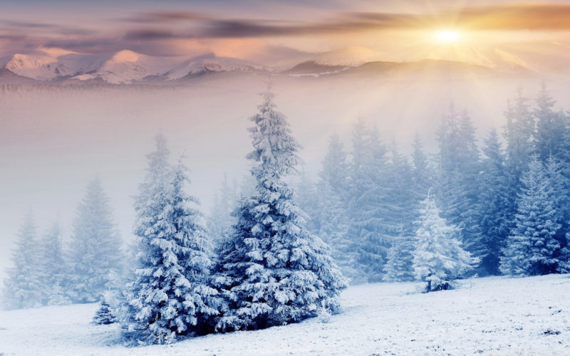 10 Latest Winter Wonderland Wallpaper Hd FULL HD 1080p For PC Desktop 2020 free download winter wonderland e29da4 4k hd desktop wallpaper for 4k ultra hd tv 1 800x500