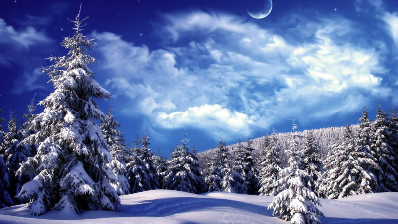 10 Latest Winter Wonderland Wallpaper Hd FULL HD 1080p For PC Desktop 2020 free download winter wonderland wallpapers hd wallpapers wallpapers for desktop 800x450
