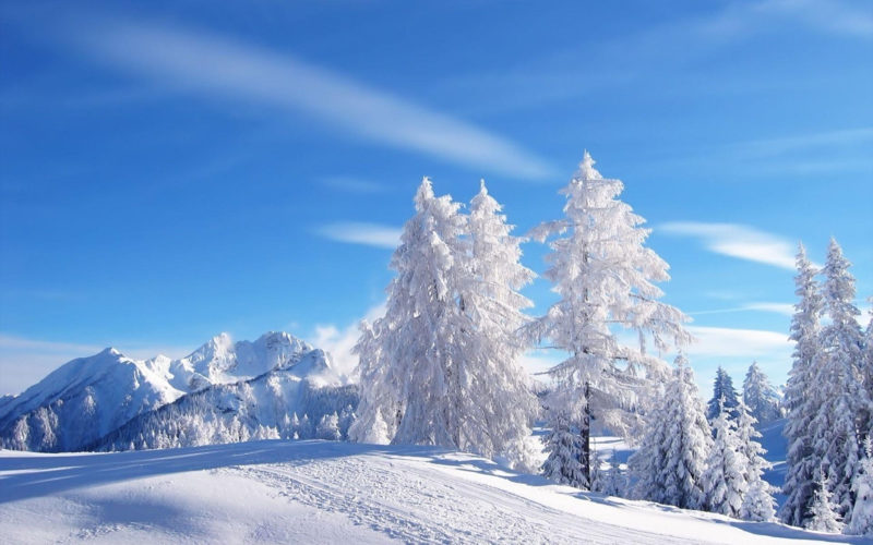 10 Latest Winter Wonderland Wallpaper Hd FULL HD 1080p For PC Desktop 2020 free download winter wonderland wallpapers wallpaper cave 800x500