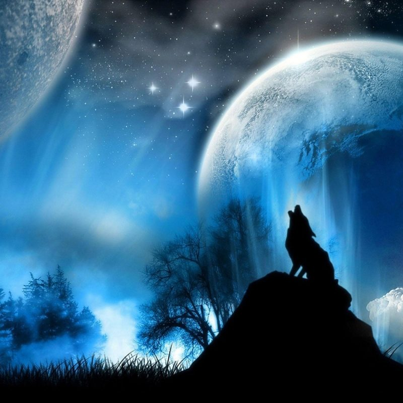 10 Latest Wolf And Moon Wallpaper FULL HD 1080p For PC Desktop 2021 free download wolf and moon wallpaper hd wallpapers 800x800