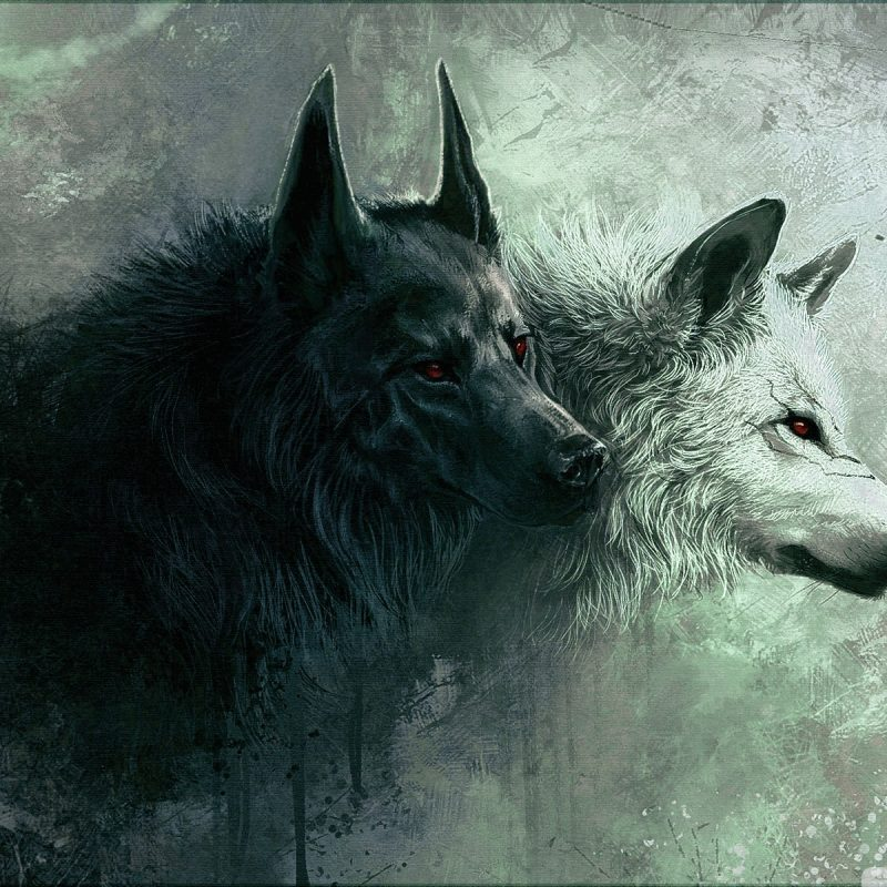10 Most Popular Hd Wolf Wallpapers 1080P FULL HD 1080p For PC Desktop 2020 free download wolf e29da4 4k hd desktop wallpaper for 4k ultra hd tv e280a2 tablet 2 800x800