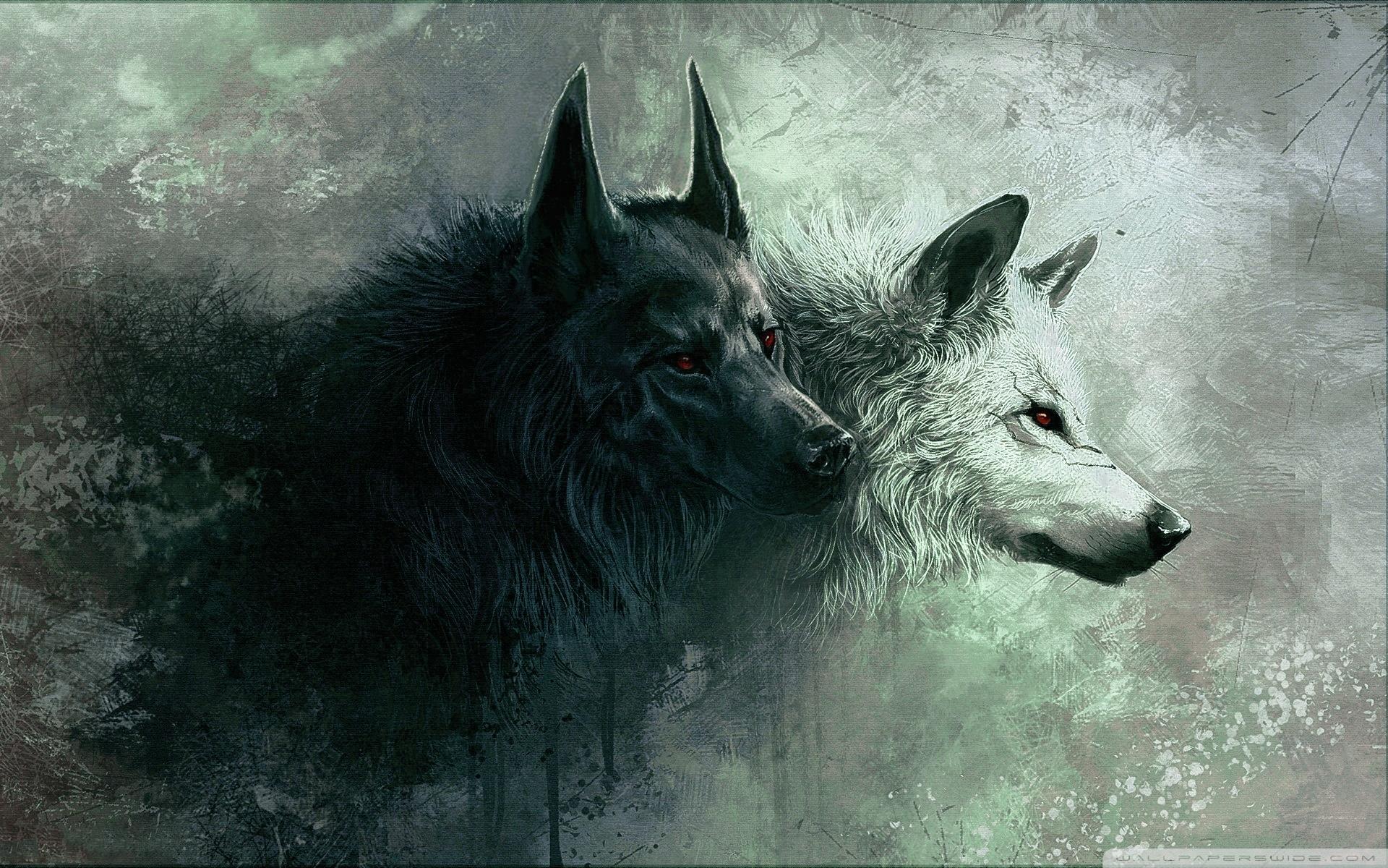 wolf ❤ 4k hd desktop wallpaper for 4k ultra hd tv • tablet
