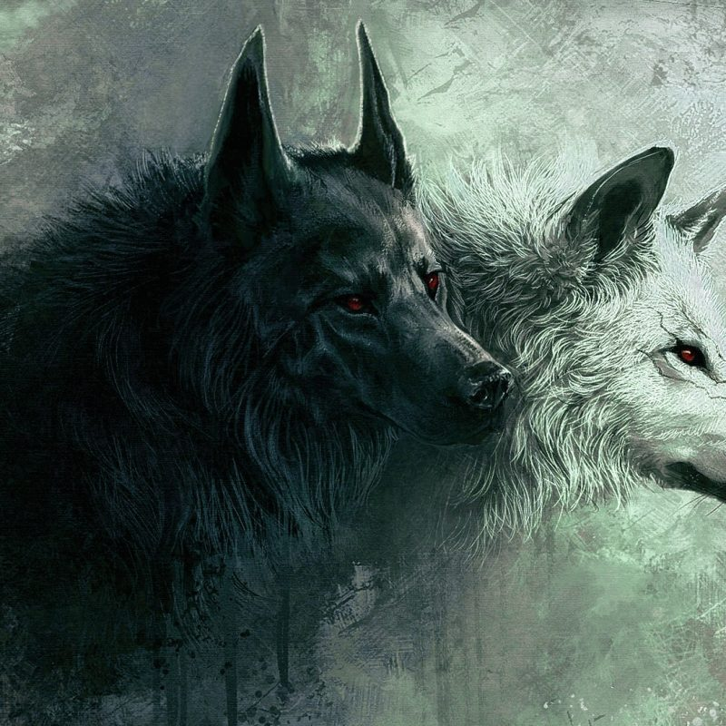 10 Latest Wolf Backgrounds For Desktop FULL HD 1080p For PC Desktop 2020 free download wolf e29da4 4k hd desktop wallpaper for 4k ultra hd tv e280a2 tablet 5 800x800
