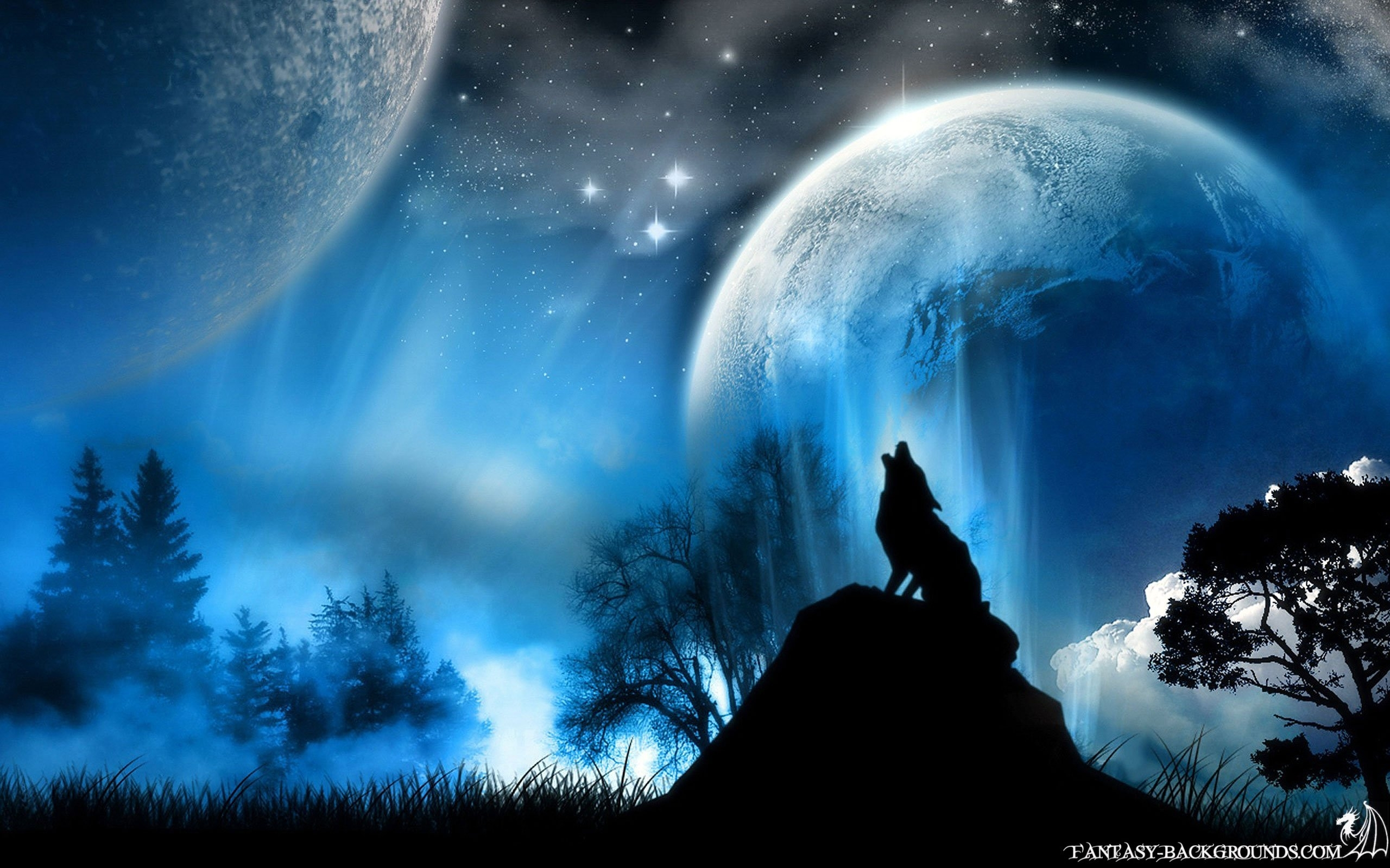 wolf howling at the moon - walldevil