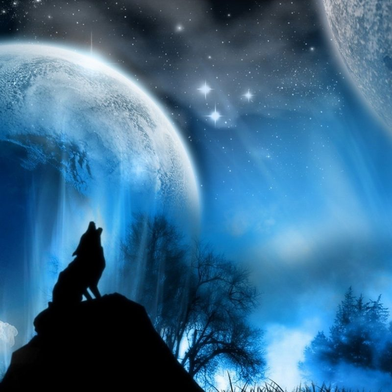 10 Best Wolf Howling At The Moon Wallpaper FULL HD 1080p For PC Background 2020 free download wolf howling at the moon wallpaper 66 images 800x800