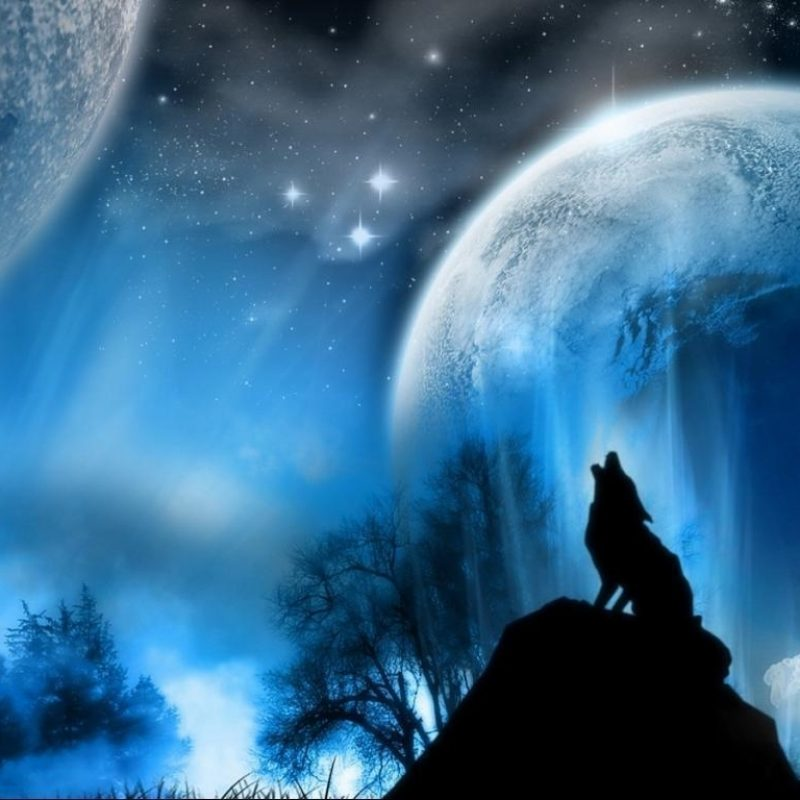 10 Best Wolf Howling At The Moon Wallpaper FULL HD 1080p For PC Background 2020 free download wolf howling at the moon wallpapers wallpaper cave 4 800x800