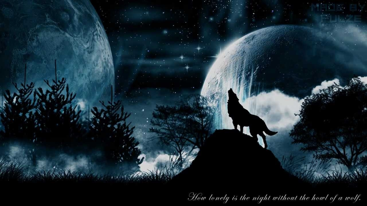 wolf moon wallpaper | hd wallpapers | pinterest | wolf wallpaper