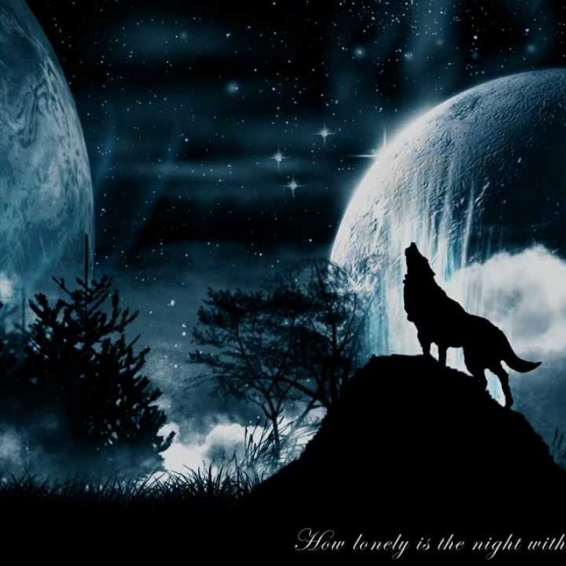 10 Latest Wolf And Moon Wallpaper FULL HD 1080p For PC Desktop 2021 free download wolf moon wallpaper hd wallpapers pinterest wolf wallpaper 800x800