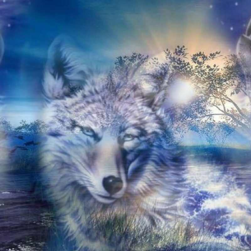 10 Latest Fantasy Wolf Wallpaper Hd FULL HD 1920×1080 For PC Desktop 2018 free download wolf wallpaper 21 50 best wolf wallpapers 800x800