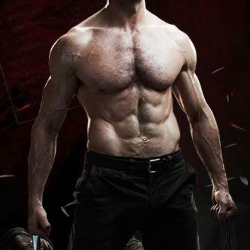 10 Best Wolverine Images Hugh Jackman FULL HD 1080p For PC Background 2020 free download wolverine hugh jackman pinterest viril et hommes 800x800