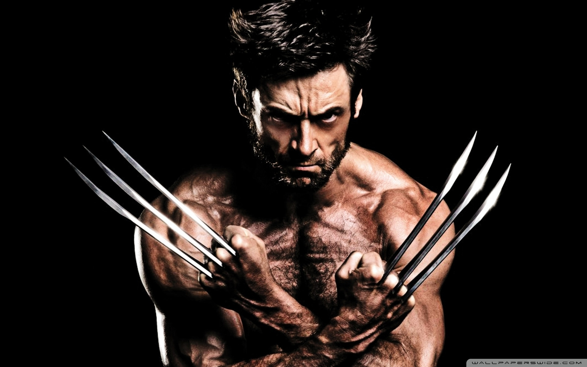 wolverine show-off ❤ 4k hd desktop wallpaper for 4k ultra hd tv