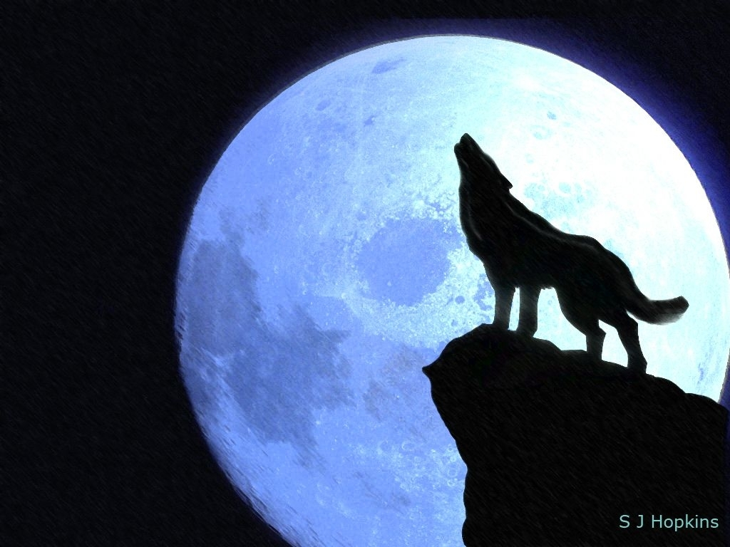 wolves howling at the moon | howling_at_the_moon_by_shopkins