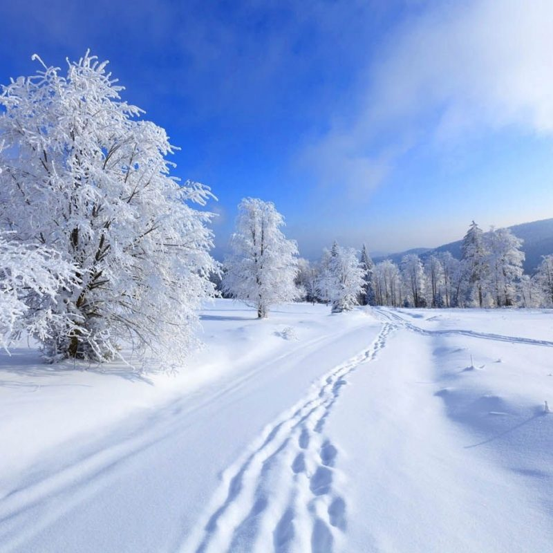 10 New Images Of Snow Scenes FULL HD 1920×1080 For PC Desktop 2018 free download wonderful winter scenes with 17 perfect photos scene winter and 800x800