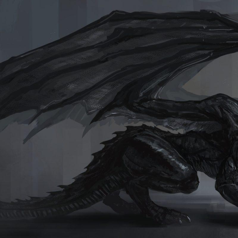10 Most Popular Black Dragon Wallpaper Hd FULL HD 1080p For PC Background 2020 free download x dragon wallpaper high quality photos of 1058x756 black dragon 800x800