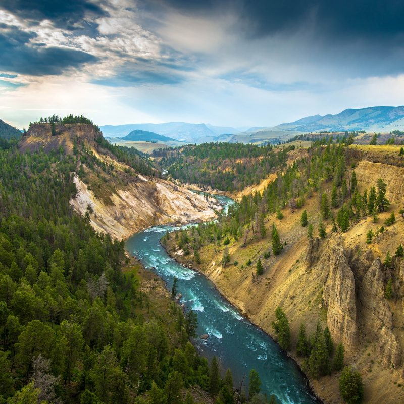 10 Best Yellowstone National Park Wallpaper Hd FULL HD 1080p For PC Background 2020 free download yellowstone national park full hd fond decran and arriere plan 800x800