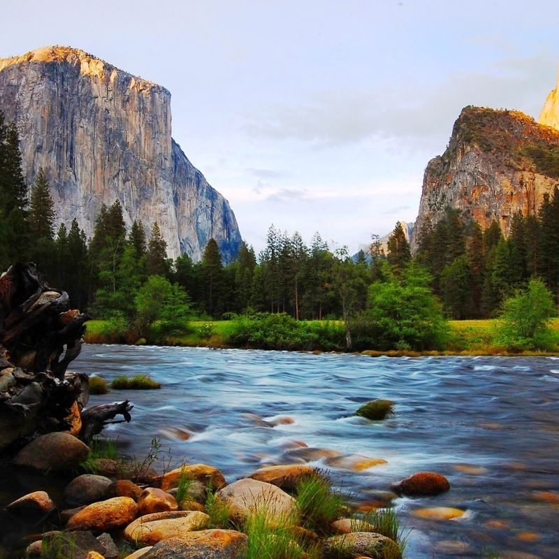 10 Best Yosemite National Park Wallpapers FULL HD 1920×1080 For PC Background 2020 free download yosemite national park wallpapers group 85 800x800