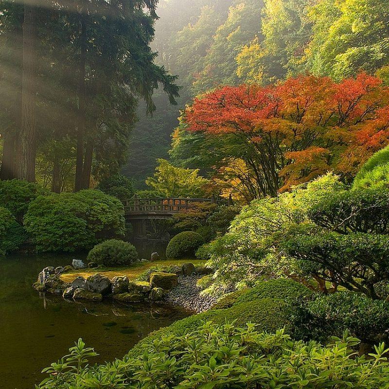 10 Best Zen Garden Wallpaper Hd FULL HD 1920×1080 For PC Desktop 2021 free download zen garden wallpaper 29 collections decran hd szftlgs 800x800